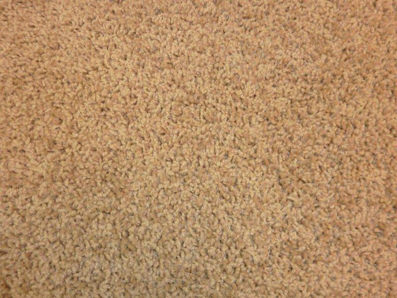 Carpet g b sales for Pet resistant carpet